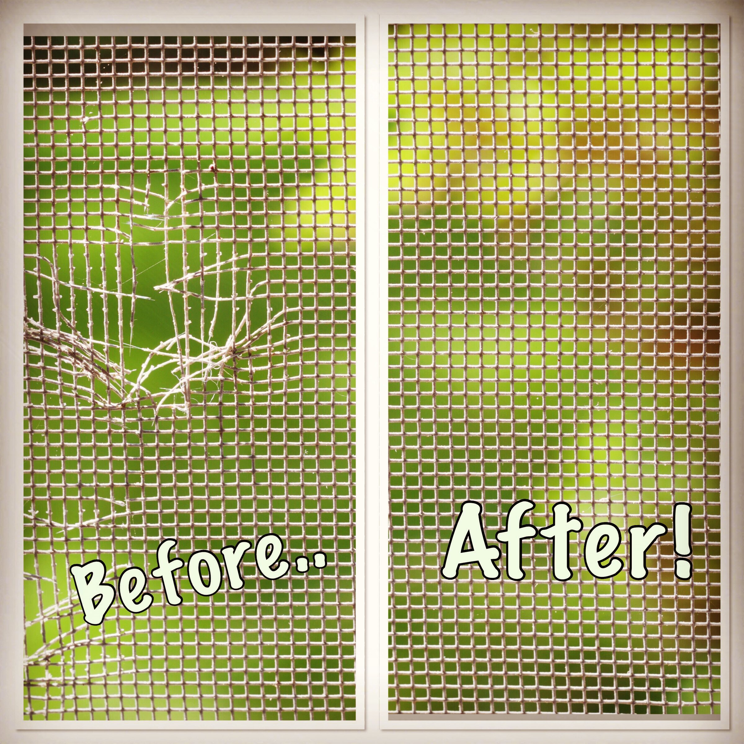 Window Screen Repair Classic Glass And Glazing